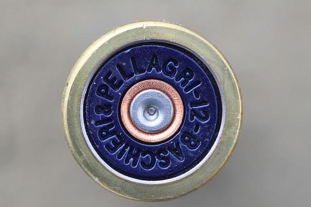 ピストルの弾